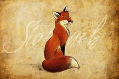 Sionnach -Fox {irish gaelic}