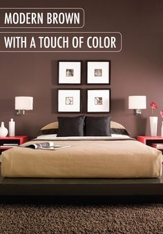 Brown Painted Room Design Inspiration And Project Idea Gallery Behr