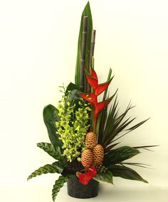 Image from http://www.flowersonq.com.au/site_folders/19/images/products/swfimage_1072_1.jpg.