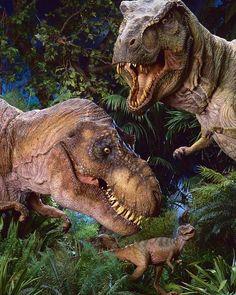 "Dinosaur on Instagram: ""@jurassicyourworld Everyone's favorite family. - #dino #dinosaur #dinosaurs #trex #paleontology #paleoart #velociraptor #tyrannosaurus…"" T Rex Jurassic Park, Jurassic Park World, Dinosaur Life, Dinosaur Art, Jurrassic Park, Park Art, Dinosaure Herbivore, The Lost World, Spinosaurus"