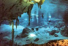 Riviera Maya Cenotes / playa del carmen / mexico