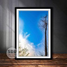 Downloadbares Bild, Digital Foto, druckbare Wandkunst, Baum, Wald, Wolke, Natur, Toter Baum, Blattlos, Blauer Himmel, Wien, Österreich
