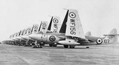 Sea Hawks 898 NAS at RNAS Brawdy 1954 - Hawker Sea Hawk - Wikipedia, the free…