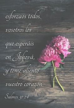 Salmos 31:24 Esforzaos todos vosotros los que esperáis en Jehová, y tome aliento vuestro corazón.♔ Gods Love Quotes, Quotes About God, Faith Quotes, Bible Quotes, Bible Text, Bible Words, Christian Messages, Christian Quotes, Biblical Verses