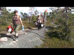 Hiking in Riisitunturi, Lapland