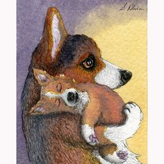 Welsh Corgi dog pup dreaming signed art print he'd had a busy day hard at work playing sleeping dreaming mother and child Susan Alison Corgi Drawing, Corgi Pictures, Training Your Dog, Training Tips, Collie Dog, Pembroke Welsh Corgi, Dog Signs, Dog Art, Puppies