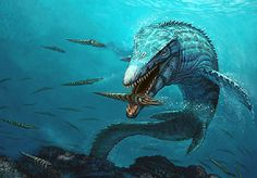Mosasaurs are often thought to be marine dinosaurs, but they are actually close relatives to today's lizards and snakes.