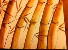Ocra Bamboo 2