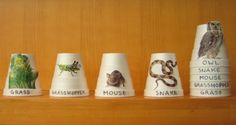 Not So Flannel Friday: Food Chain Stacking Cups - RovingFiddlehead ...