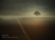 . by sile