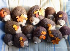 Tiny knitted hedgehogs!.