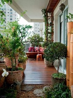 large balcony garden