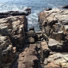 View of the ocean and rock from Marginal Way Perkins Cove near Ogunquit Maine...so beautiful and a wonderful walk  April 2015