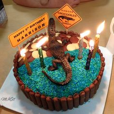 Crocodile Birthday Cake Easy 5th Birthday Cake Fifth Birthday Cake Ideas Coles Mud Cake