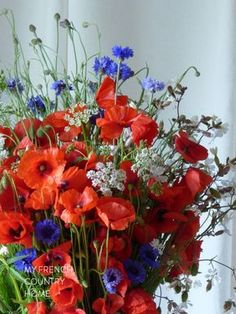 bleu blanc rouge for bastille day - MY FRENCH COUNTRY HOME Bleu blanc rouge for bastille day in France, when we celebrate the French revolution and honour the young men and women of the national military Beautiful Flower Arrangements, My Flower, Fresh Flowers, Flower Power, Wild Flowers, Floral Arrangements, Beautiful Flowers, Flower Petals, Bouquet Bleu