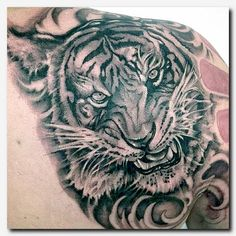 #tigertattoo #tattoo eagle tattoos for guys, fallen angel tattoo, cool dragon designs, tattoos for guys on forearm, warrior woman tattoo, girls rib cage, paw print tattoo outline, horseshoe tattoo designs, tattoos pictures names, girl with the dragon tattoo movie swedish, black stripe tattoo, ankle vine tattoos, tattoo style writing, snake tattoos on arm, feminine neck tattoo designs, irish designs and meanings
