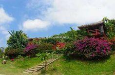 Workaway in Ecuador. Help needed in a B&B in the beautiful beach town of Ayampe, Ecuador