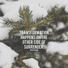 Transformation happens on the other side of surrender / quote / Insight <3