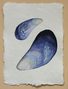 shells:::