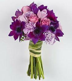 limonium wedding purple - Google Search