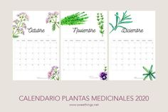 Planning in advance can help you to start a new year like a pro so today I bring you a free 2020 calendar different models) to choose from Free Calender, Vintage Calendar, Pennant Banners, Which One Are You, Bullet Journal Inspo, Happy Father, Happy Monday, Vintage Cards, Hello Everyone