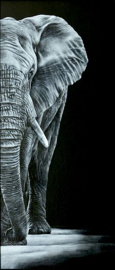 Karl Hamilton Cox Paintings for Sale : The Visitor by Karl Hamilton Cox (So imperial! Photo Elephant, Elephant Artwork, Elephant Love, What Do Elephants Eat, Save The Elephants, Buy Paintings, Animal Paintings, Animal Drawings, Indian Paintings