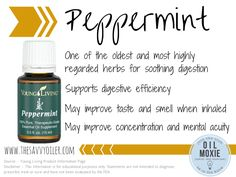 Peppermint essential oil   The Savvy Oiler   For more information or to order, click here---->  http://www.thesavvyoiler.com/order-oils/