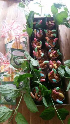 Wormen in de modder voor de kinderen  (chocolade kloppudding en verkruimel bastogne koek met snoepwormen) en soep+soepstengels voor de juffen/meesters