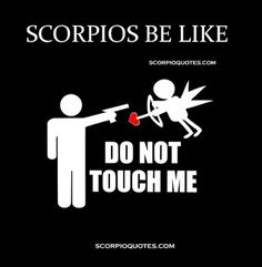 Scorpios Be Like: Do not touch me.