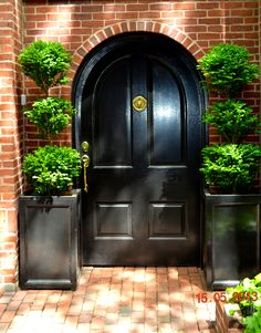 Topiaries and black arched door... Traditional perfection