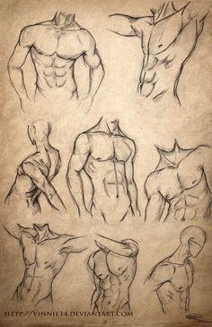 Male Body Sketches by Vinnie14                                                                                                                                                     Más