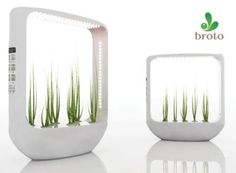 Broto Pot Plant Aeroponic very chic design, complete with LED light source and a plant design