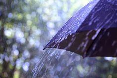 Campomaiornews: 2016 começa com chuva nas previsões para os próxim...
