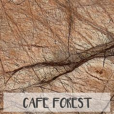 Cafe Forest Marble | 12x12 | 18x18 | Polished