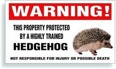 Window Stickers, Bumper Stickers, Hedgehog Pet, Car Magnets, Cage, Decals, Pets, Quill, Fur