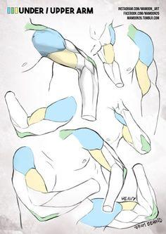 simplified anatomy 03 - male arm by mamoonart.deviantart.com on @DeviantArt