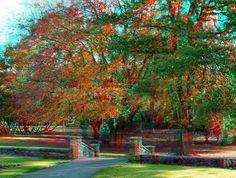 3D Images - Autumn in the park (9)