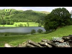 The Lake District National Park is the largest English National Park, established in 1951. Its 2,292 square kilometres cover fells, dales, lakes, villages, towns, beaches and tidepools    © All Rights reserved by Fauna Film B.V. http://www.faunafilm.nl