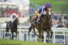 Champion Minding and jockey Ryan Moore overcame a troubled trip and drew off to win the G1 Investec Oaks