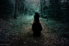 A fairy of the norwegian woods : Photo