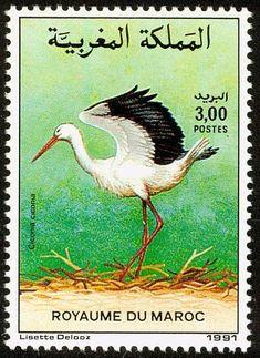 Stamp: White Stork (Ciconia ciconia) (Morocco) (Birds) Mi:MA 1199,Sn:MA 729,Yt:MA 1111 #Phelately