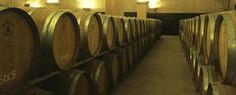 Ruta del vino por España