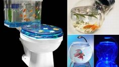 Unusual and creative fish tanks - Hometone