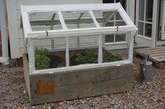 Garden Cottage, Home And Garden, Backyard Greenhouse, Cold Frame, Farmhouse Remodel, Old Windows, Glass House, Raised Garden Beds, Garden Inspiration