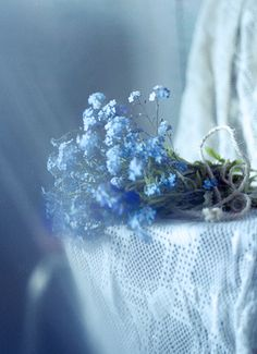The tiniest of blue flowers. The tiniest of blue flowers. Thank you ❤️ for this lovely soft pin❤️ Love Blue, Blue And White, Anna Blue, Blue Cream, Blue Photography, Macro Photography, Color Celeste, Granny Chic, Arte Floral