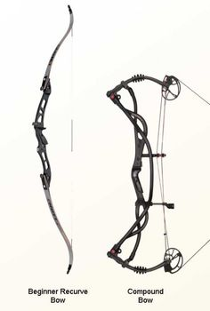 Compound and Recurve Bows from Hoyt compared.
