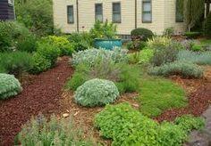 grass free garden - Google Search