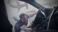 Has Sharknado Jumped the Shark? 'Oh Hell No!' Ratings Drop 31% | Adweek