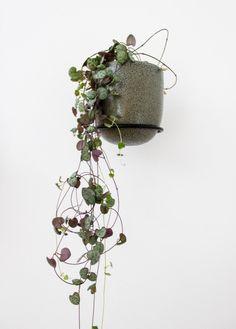 F L O A T I N G green plants on the plant wall.  #plant #interiør #planter #grønneplanter #mithjem #blomster #hjem #indretning #grønthjem #grøn #miljø #slowliving #slowfood #urbangarden #urbanfarming #småhjem #design #danskdesign #nordiskehjem #nordisk #danskproduceret #smallspaces #plantstagram Planter Pots, Wall, Walls