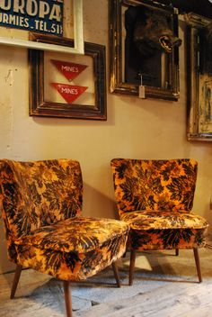 Three sixties cocktail chairs. Available at Reginald Ballum.